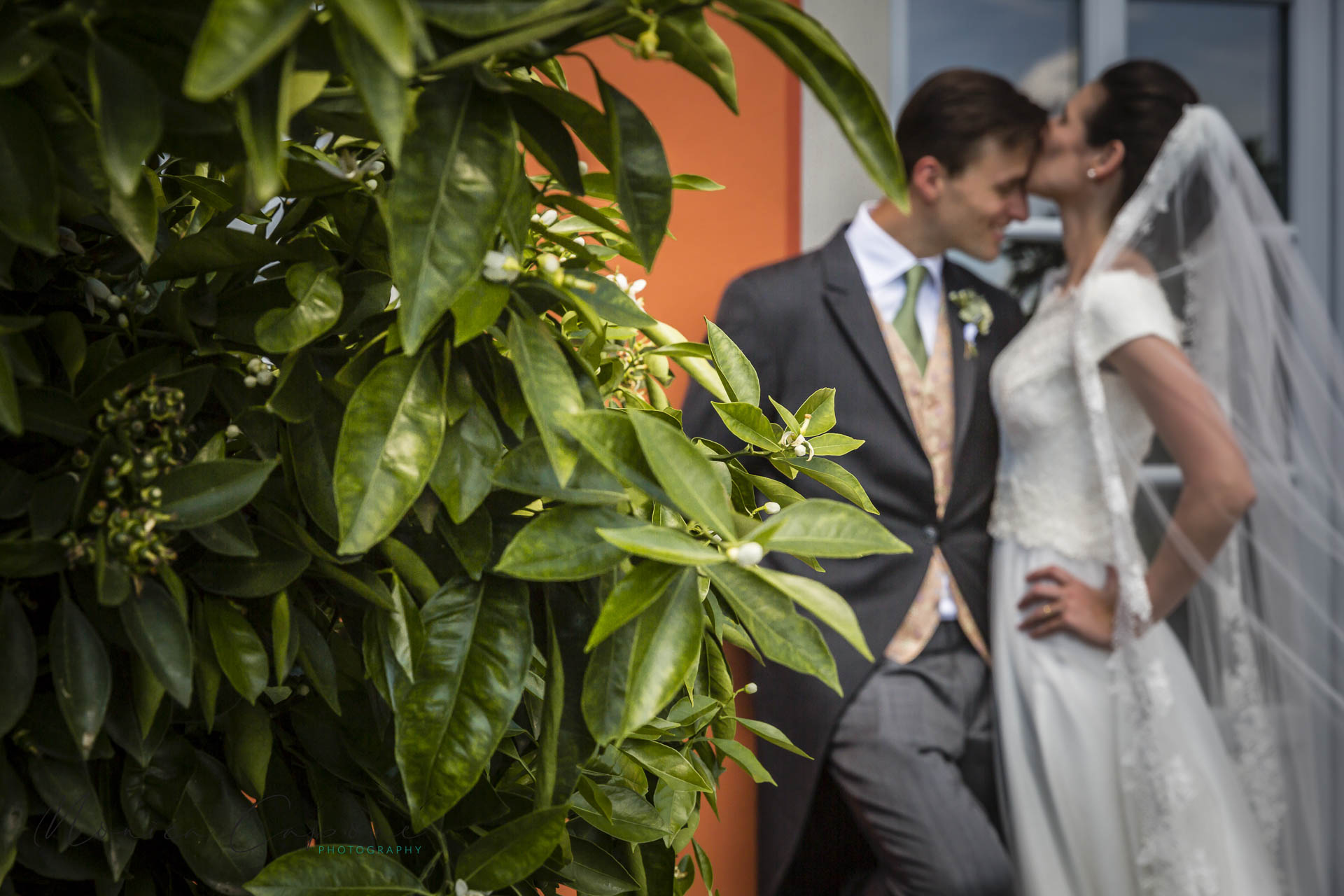 fotografi-matrimoni-lucca